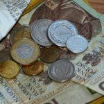 Koszt karmienia sztucznego dla budżetu domowego