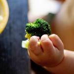 Rozszerzanie diety niemowląt karmionych naturalnie